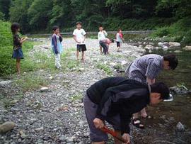 写真2. 丹波山の河川でシジミを探しているところ。子供達も協力してくれている?
