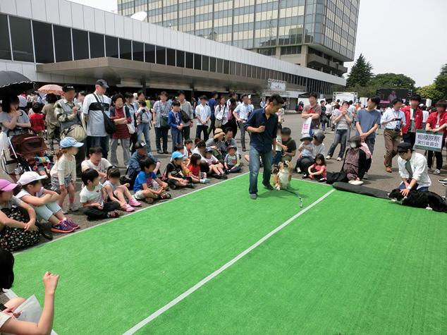 帝京科学大学 『NHK渋谷 DE どーも 2016』 に出展しました。 #05