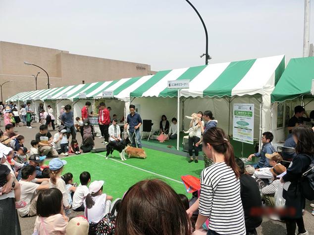 帝京科学大学 『NHK渋谷 DE どーも 2016』 に出展しました。 #06