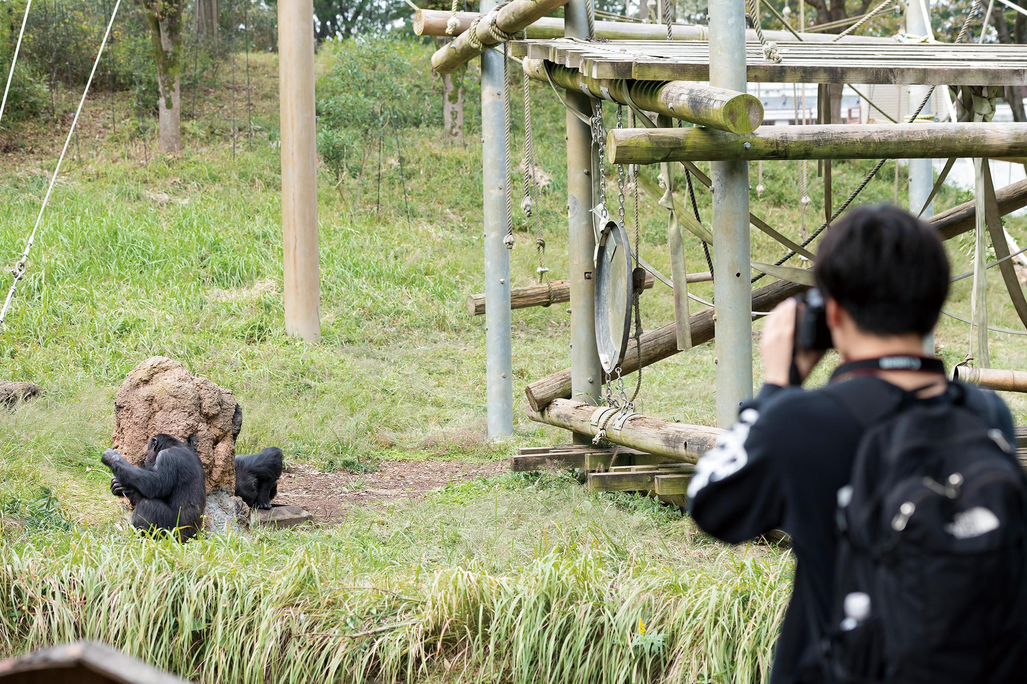 1.動物園動物学実習